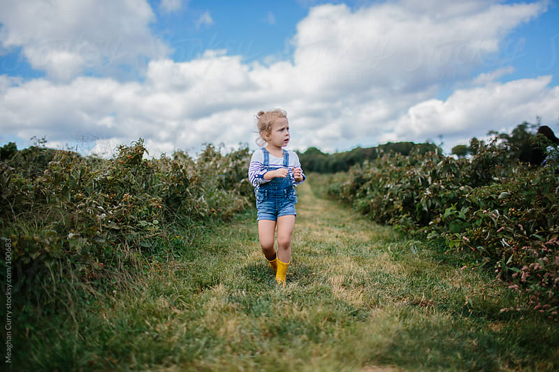 little girl picking raspberries in overalls and boots by Meaghan Curry for Stocksy United