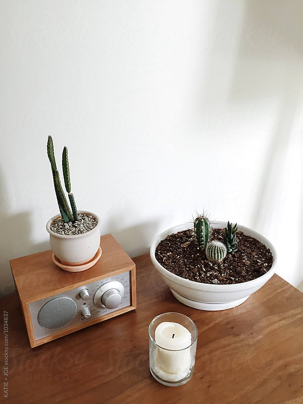 Corner of a room with house plants and a radio by KATIE + JOE for Stocksy United