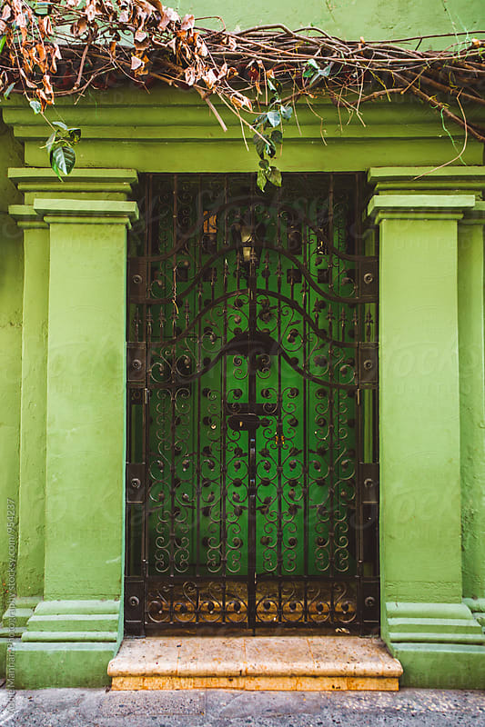 Green Door by Addie Mannan Photography for Stocksy United