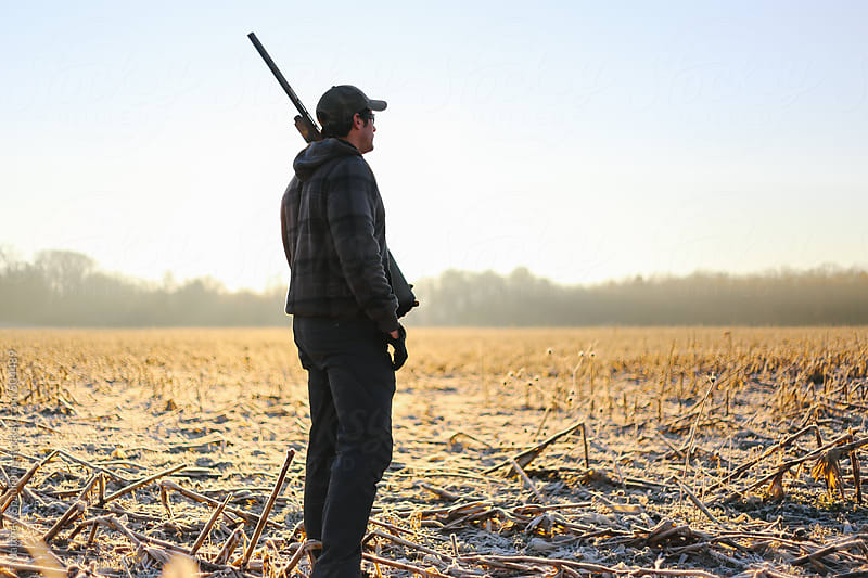 Person with shotgun standing in frost covered corn field on winter morning by Matthew Spaulding for Stocksy United