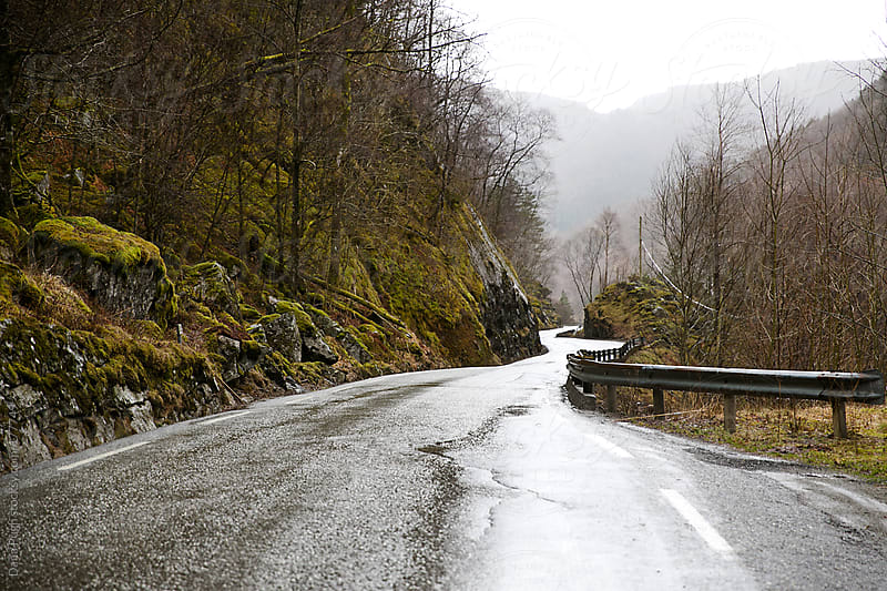 Rural road in rainy Norway by Dana Pugh for Stocksy United