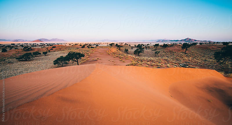 Namibian sand dune desert landscape by Micky Wiswedel for Stocksy United