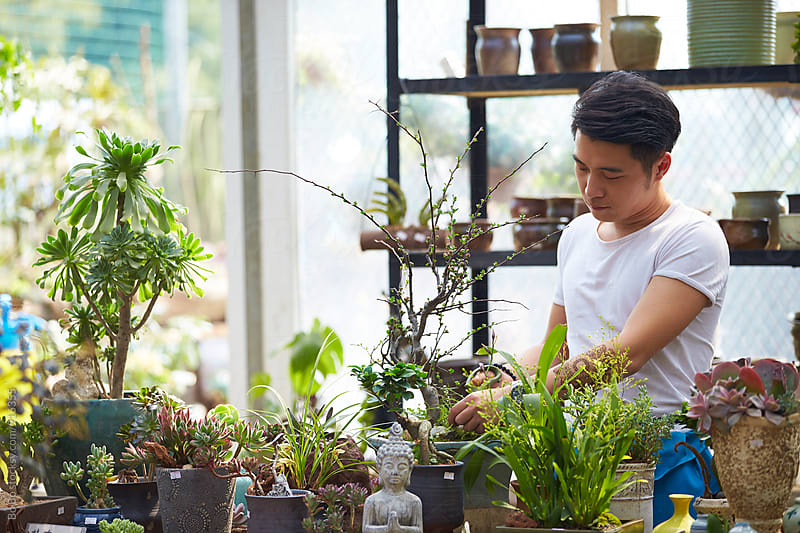 young male florist working in the shop by Bo Bo for Stocksy United