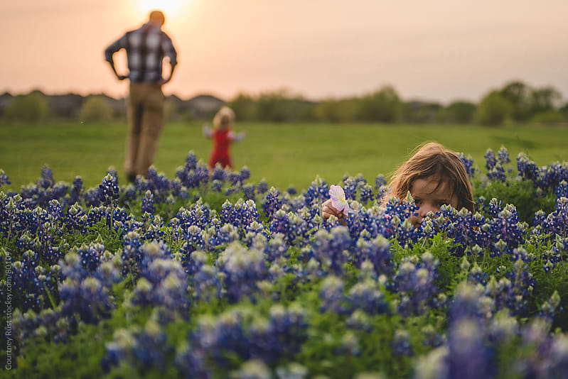 hiding in the bluebonnets by Courtney Rust for Stocksy United