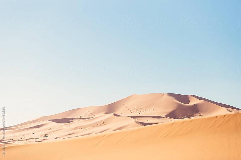 Sahara Dunes by Hillary Fox for Stocksy United
