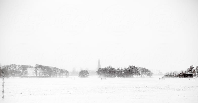 Snowstorm in Holland by Marcel for Stocksy United