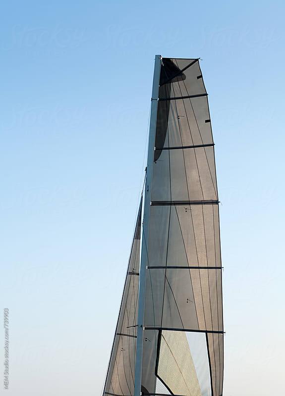 main sail and jib on a catamaran f18 by MEM Studio for Stocksy United