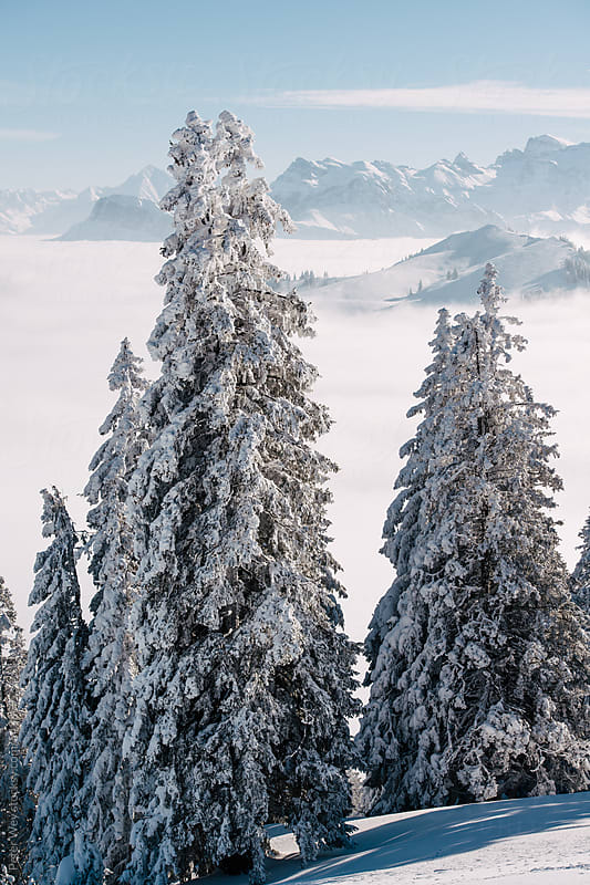 Snow covered scenery above the clouds by Peter Wey for Stocksy United