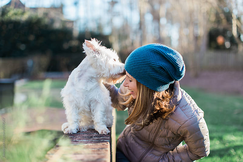 Adorable small white dog kissing a beautiful woman by Jakob for Stocksy United