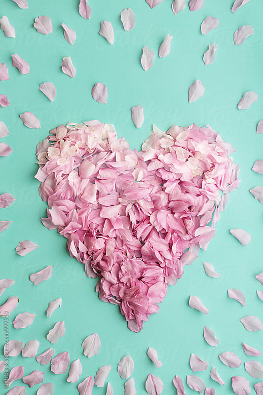 Heart made from blossom petals