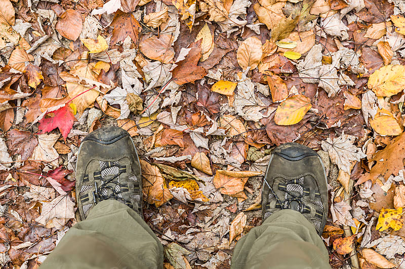 Hiker Standing on a bed of Leaves by Adam Nixon for Stocksy United