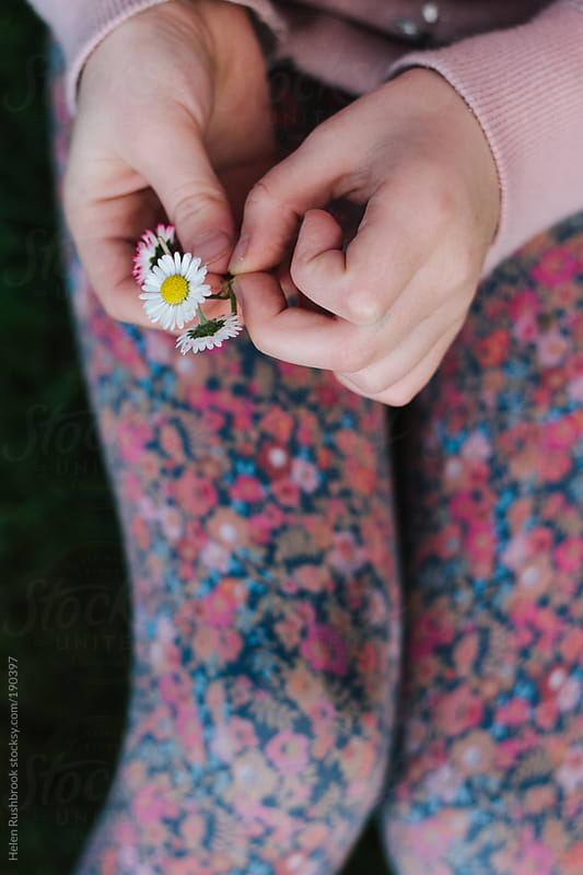 A little girl making daisy chains by Helen Rushbrook for Stocksy United