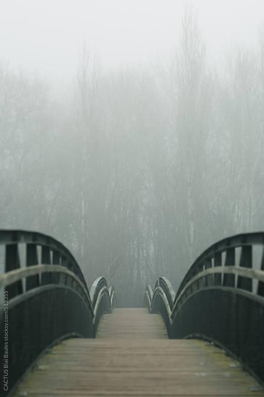 Bridge on a foggy day.  by CACTUS Blai Baules for Stocksy United