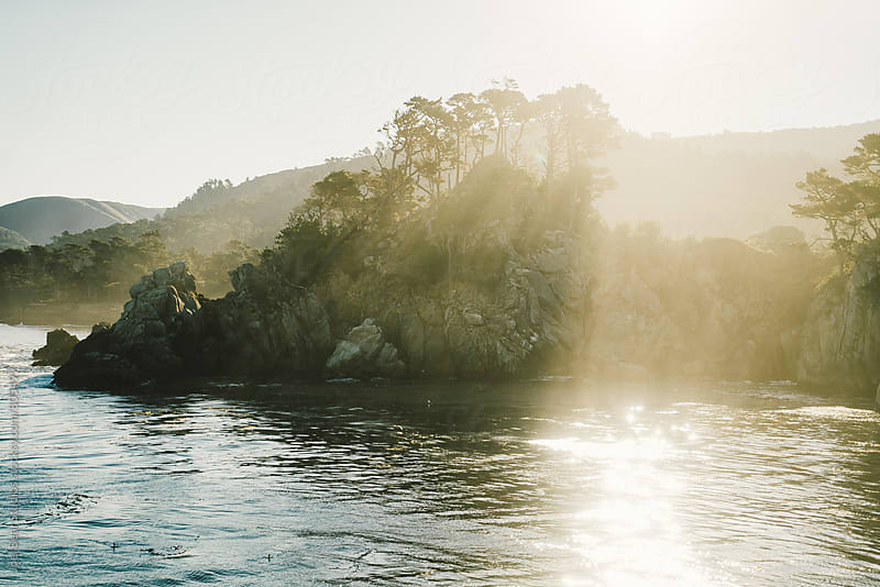 Point Lobos, California  by Joel Bear Studios for Stocksy United