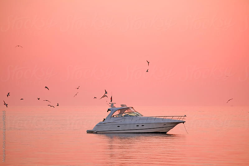 Yacht and seagulls during sunset  by Melanie Kintz for Stocksy United