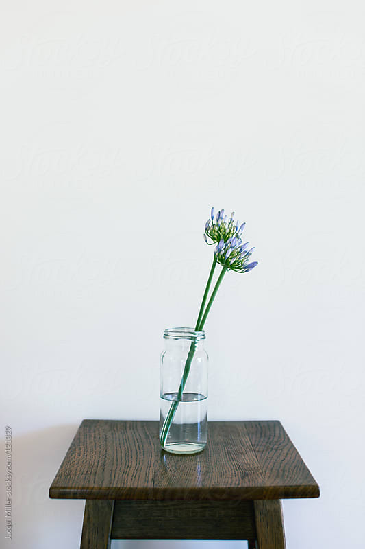 Agapanthus in a glass jar on an antique table by Jacqui Miller for Stocksy United