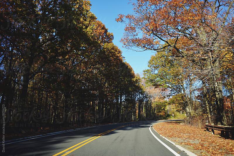 Road Trip Upstate by David Keller for Stocksy United