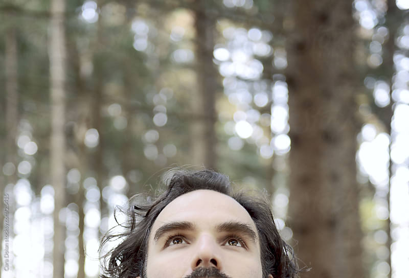 Man looks up in the forest by Cara Dolan for Stocksy United