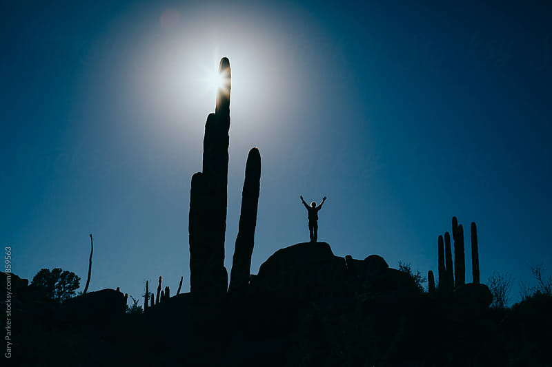 A man saluting his arms in the air silhouetted against a blue sky and giant cacti by Gary Parker for Stocksy United