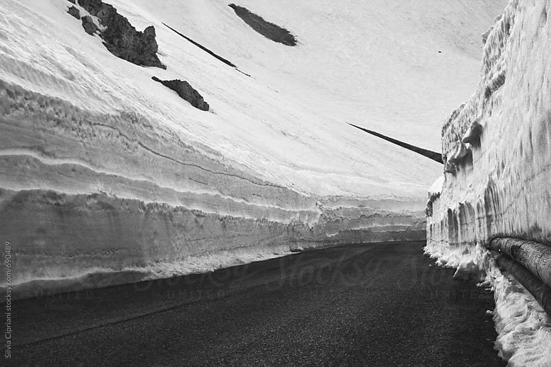 Snowy road in winter by Silvia Cipriani for Stocksy United