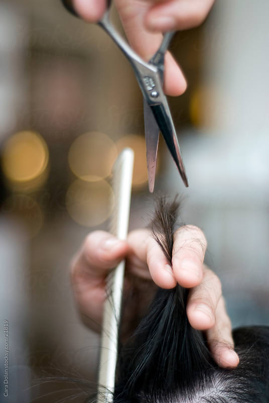 Stylist holding scissors cuts a client's hair by Cara Dolan for Stocksy United