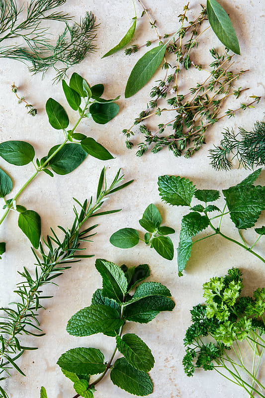 Various herbs on marble by Pixel Stories for Stocksy United