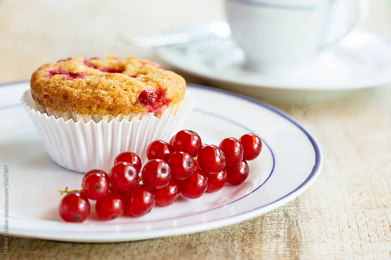 Lemon Red Currant Cupcakes by Harald Walker for Stocksy United