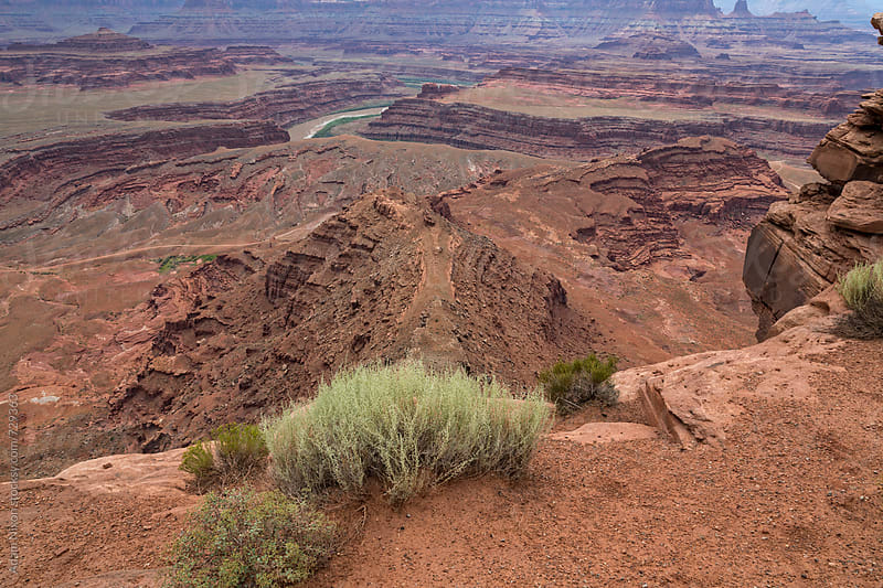 View of a vast landscape of canyons and the Colorado River by Adam Nixon for Stocksy United
