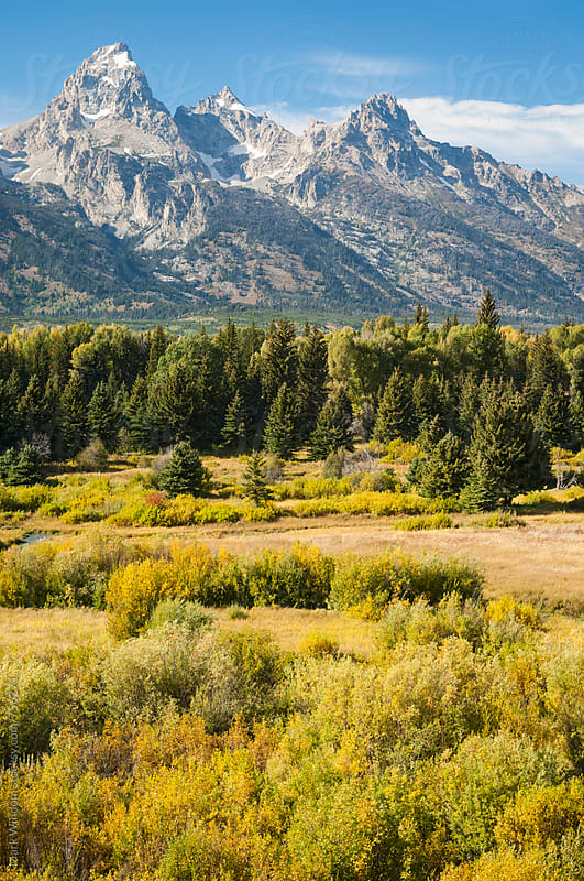 The Grand Tetons in Fall by Mark Windom for Stocksy United