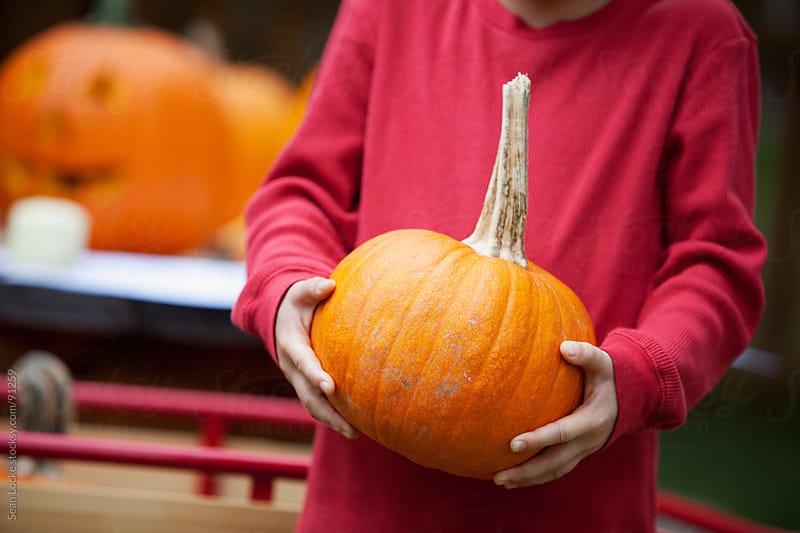 Pumpkins: Boy Holding Small Pumpkin by Sean Locke for Stocksy United