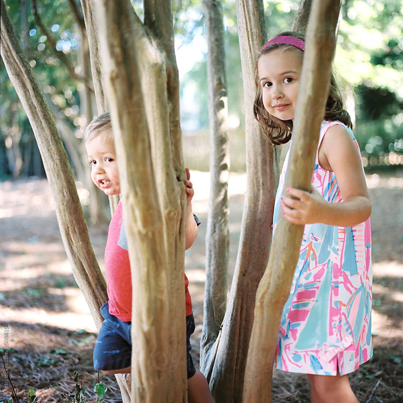 Beautiful young children playing in a tree by Jakob for Stocksy United