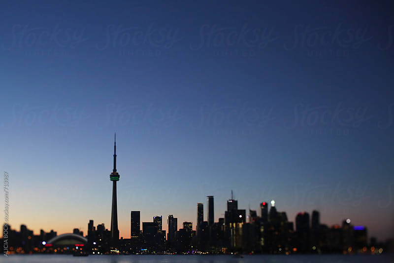 View Of Downtown Toronto And The Harbor On A Summer Evening by ALICIA BOCK for Stocksy United