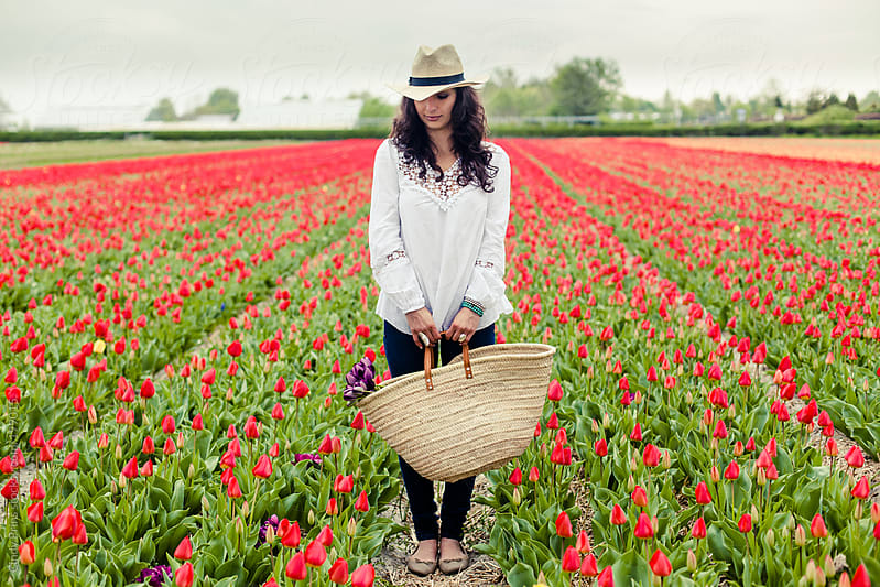 Woman with a straw basket standing in a field of red tulips by Cindy Prins for Stocksy United