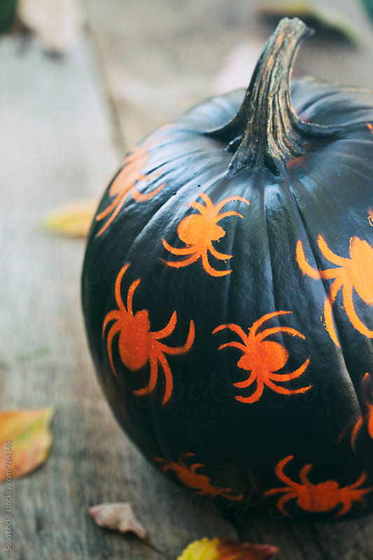 Painted: Spider Jack-O-Lantern On Rustic Wood by Sean Locke for Stocksy United