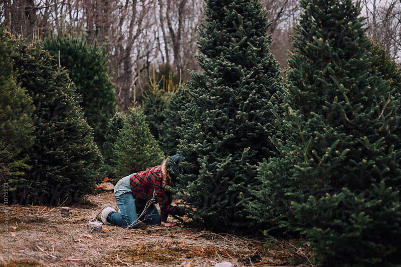 teen getting christmas tree by Léa Jones for Stocksy United
