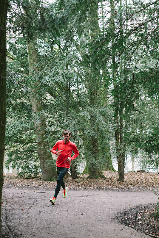 Runner running through the woods on a path by Ivo de Bruijn for Stocksy United