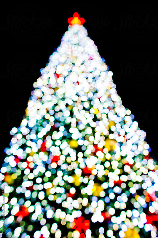Bokeh Christmas Tree by Thomas Hawk for Stocksy United