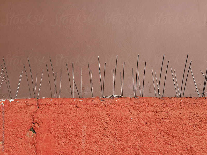 Thin metal spikes on wall, used for keeping birds away by Paul Edmondson for Stocksy United
