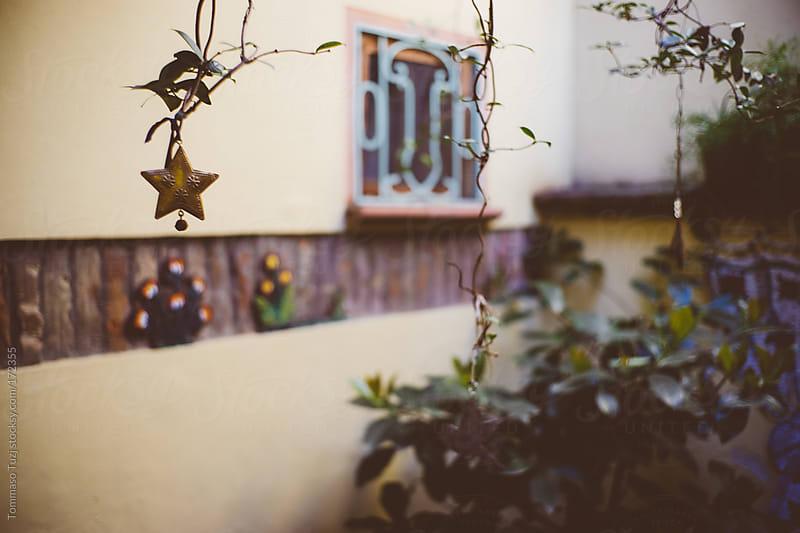 Secret Garden by Tommaso Tuzj for Stocksy United