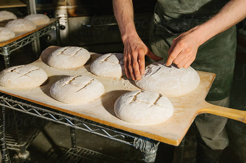 Baker shaping bread dough at a commercial artisinal bakery by Mihael Blikshteyn for Stocksy United