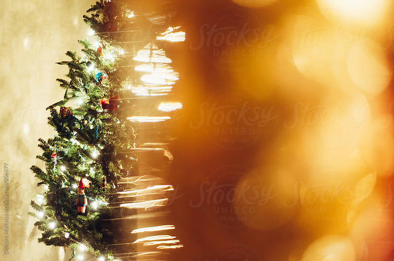Christmas tree half hidden by blurred lights by Deirdre Malfatto for Stocksy United
