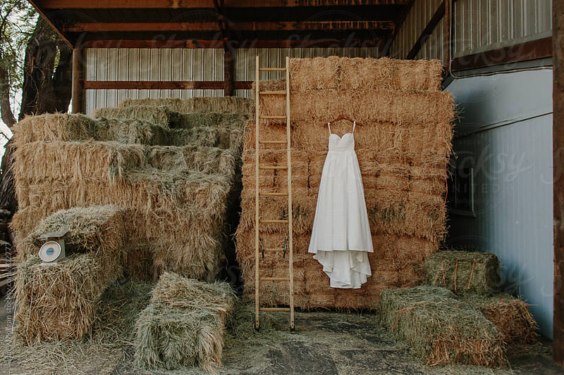 Dress in Barn by Sidney Morgan for Stocksy United