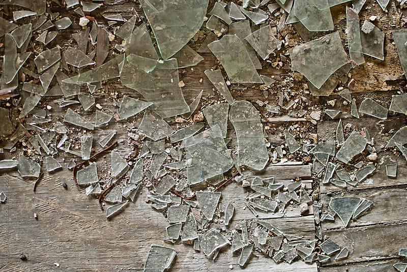 broken glass by Margaret Vincent for Stocksy United