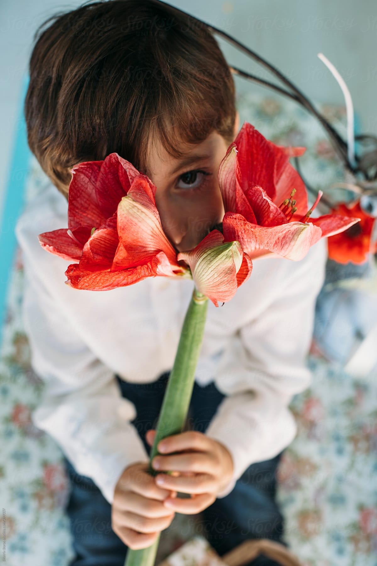 6 years old boy hiding behind a beautiful flower stocksy united 6 years old boy hiding behind a beautiful flower by beatrix boros for stocksy united izmirmasajfo