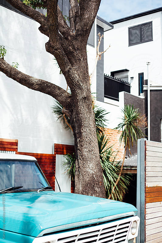 Vintage truck and palm trees by Kara Riley for Stocksy United