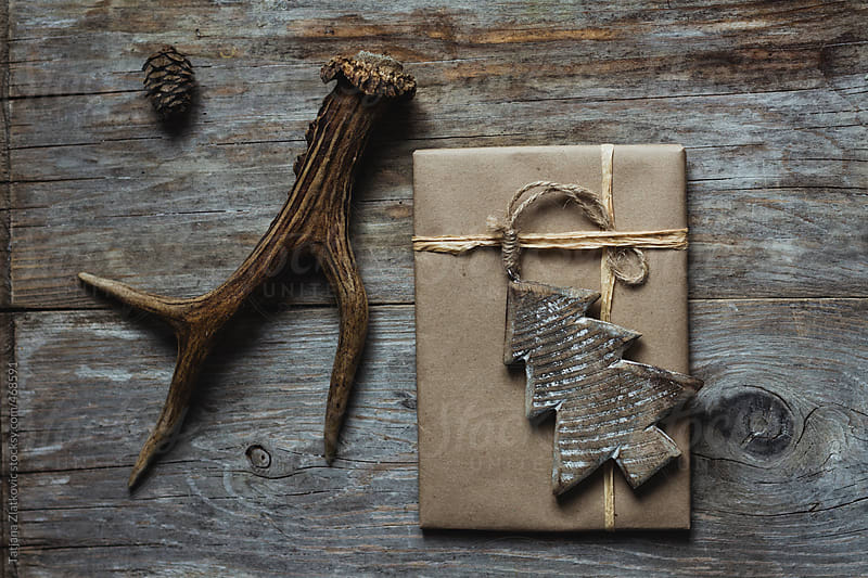 Deer antlers and Christmas gift by Tatjana Zlatkovic for Stocksy United