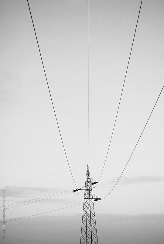 Wires by Jovana Rikalo for Stocksy United