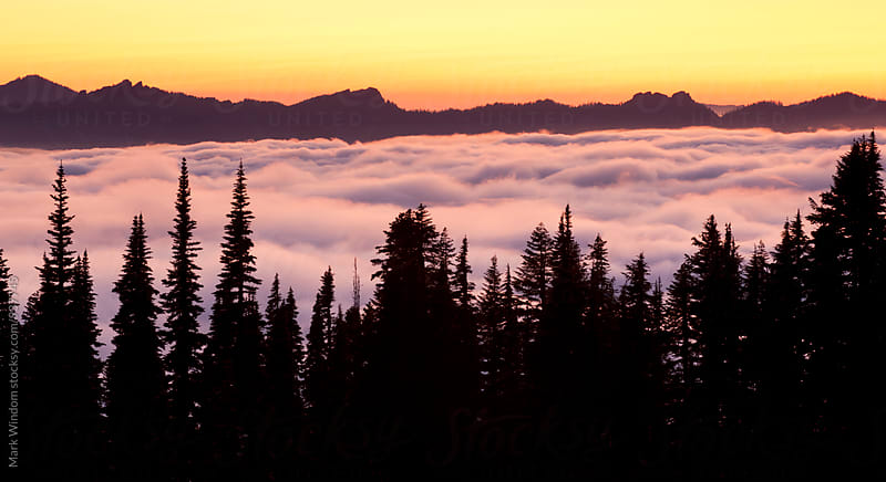 Above the Clouds at Sunset by Mark Windom for Stocksy United