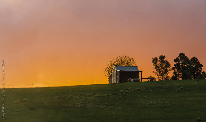 Shed on a Hill against Orange Sky by Gary Radler Photography for Stocksy United