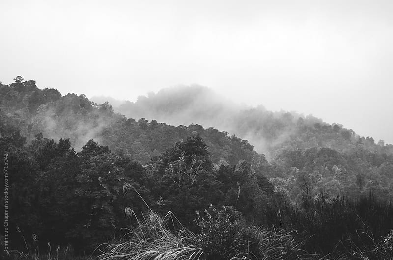 Black and white image of foggy mountain by Dominique Chapman for Stocksy United